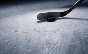 Dresden Minor Hockey Day @ Dresden Arean | Dresden | Ontario | Canada